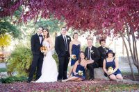 Bridal party sitting under a tree
